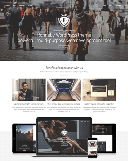 feature-image-ronneby-responsive-wordpress-template-for-multiutility