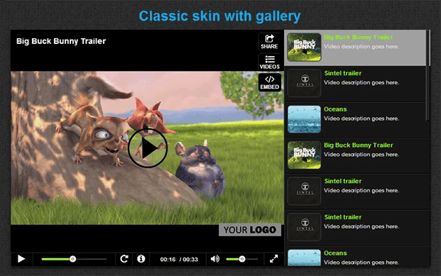 Ultimate Video Player Plugin - Classic Skin With Gallery