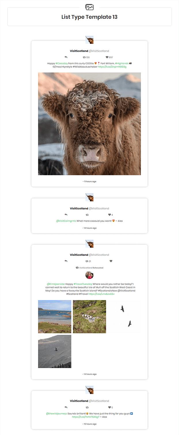 Twitter Feed WordPress Plugin - Twitter Feeds