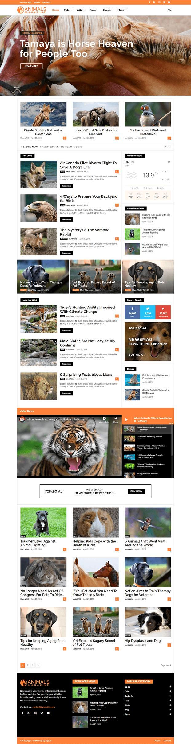 Home - Editorial WordPress Theme