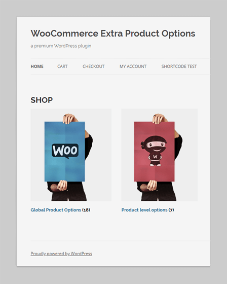 WordPress Plugin For WooCommerce