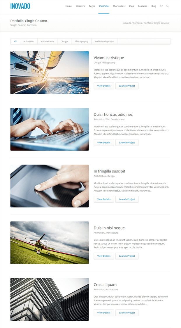 Portfolio - Customisable WordPress Theme