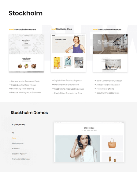 WP Multipurpose Theme