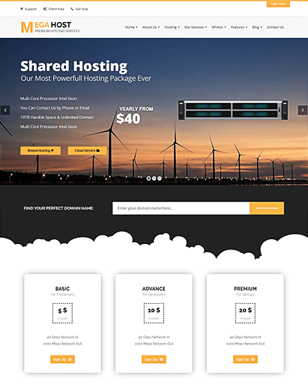WP Hosting Theme