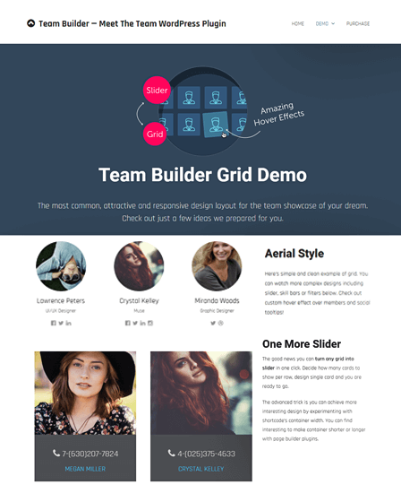 Team WordPress Plugin