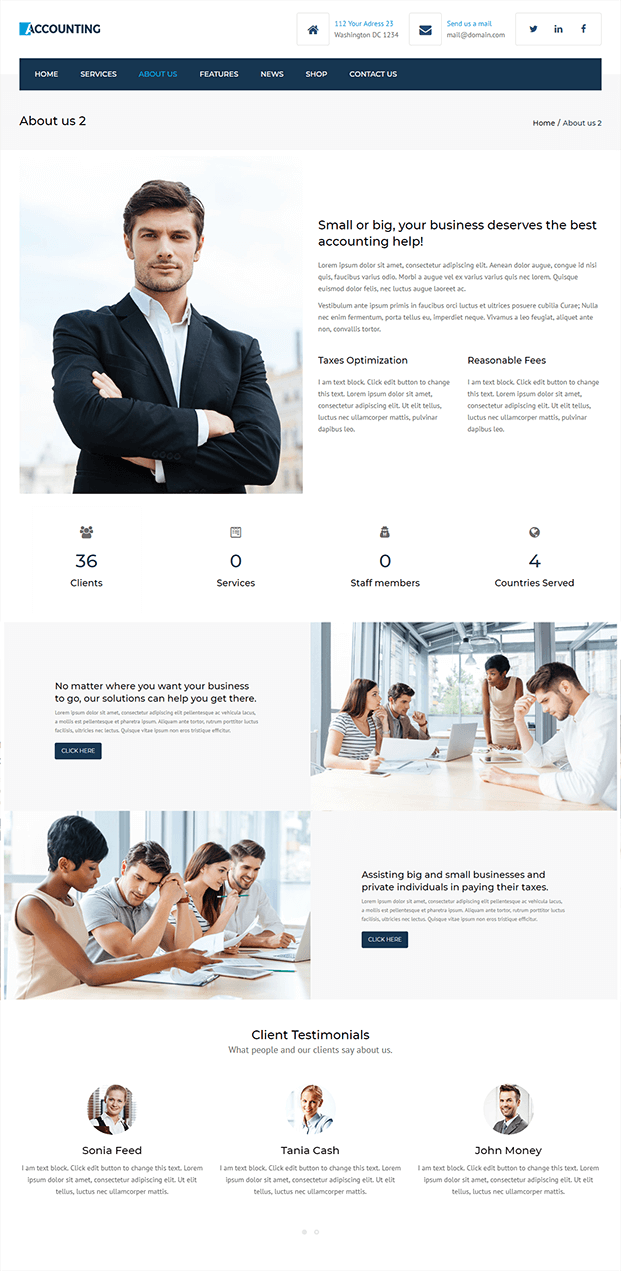 About You - Accountant WordPress Theme
