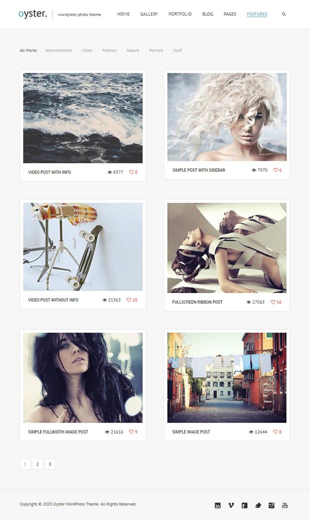 Feature - Photo WordPress Theme
