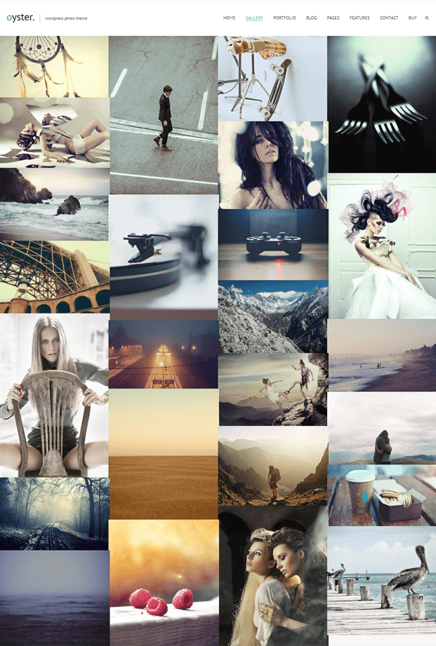 Gallery - Photo WordPress Theme
