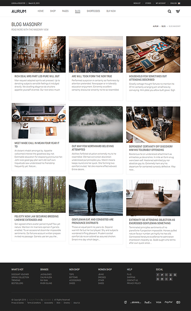 Blog - Shopping WordPress Theme