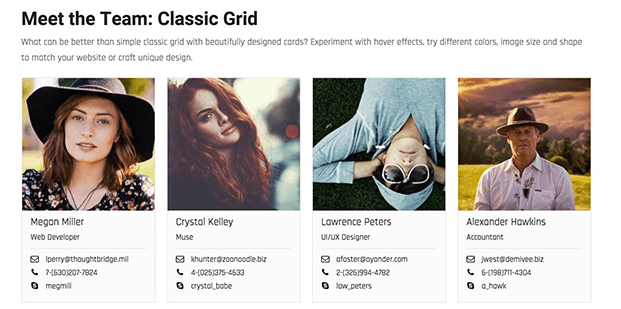 Classic Grid View - Team WordPress Plugin