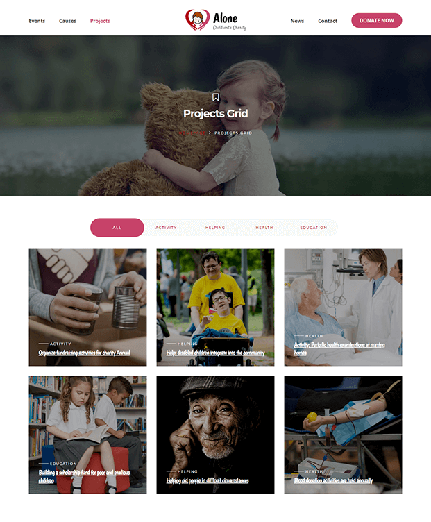 Projects Grid - WordPress NGO Theme