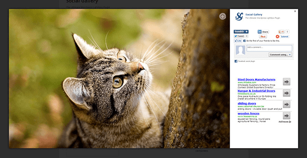 Lightbox Effects - WordPress Gallery Lightbox Plugin