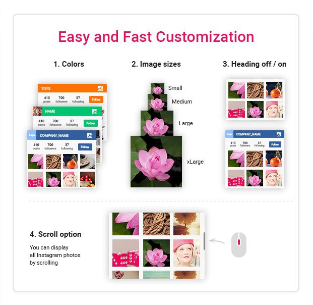 Customization Options  - Instagram Plugin For WordPress