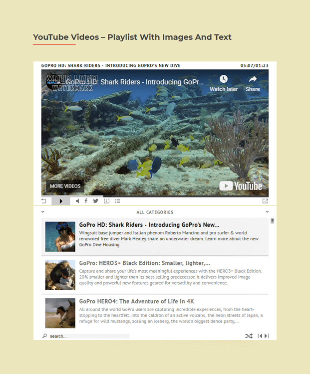 YouTube Vidoes - HTML5 Video Player WordPress Plugin