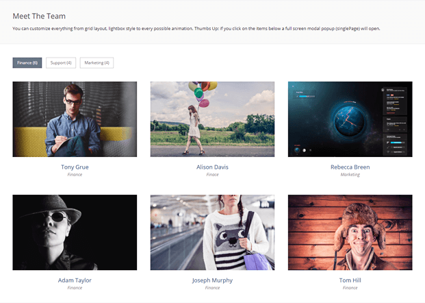 Team Layout - WordPress Plugin Grid Gallery