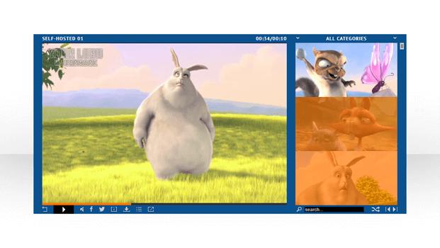 Color Scheme - HTML5 Video Player WordPress Plugin