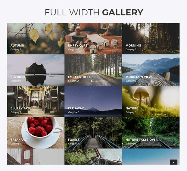 Full Width Gallery - Responsive Gallery WordPress Plugin