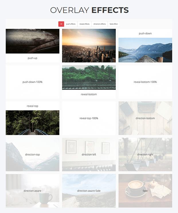 Overlay Effect - Responsive Gallery WordPress Plugin