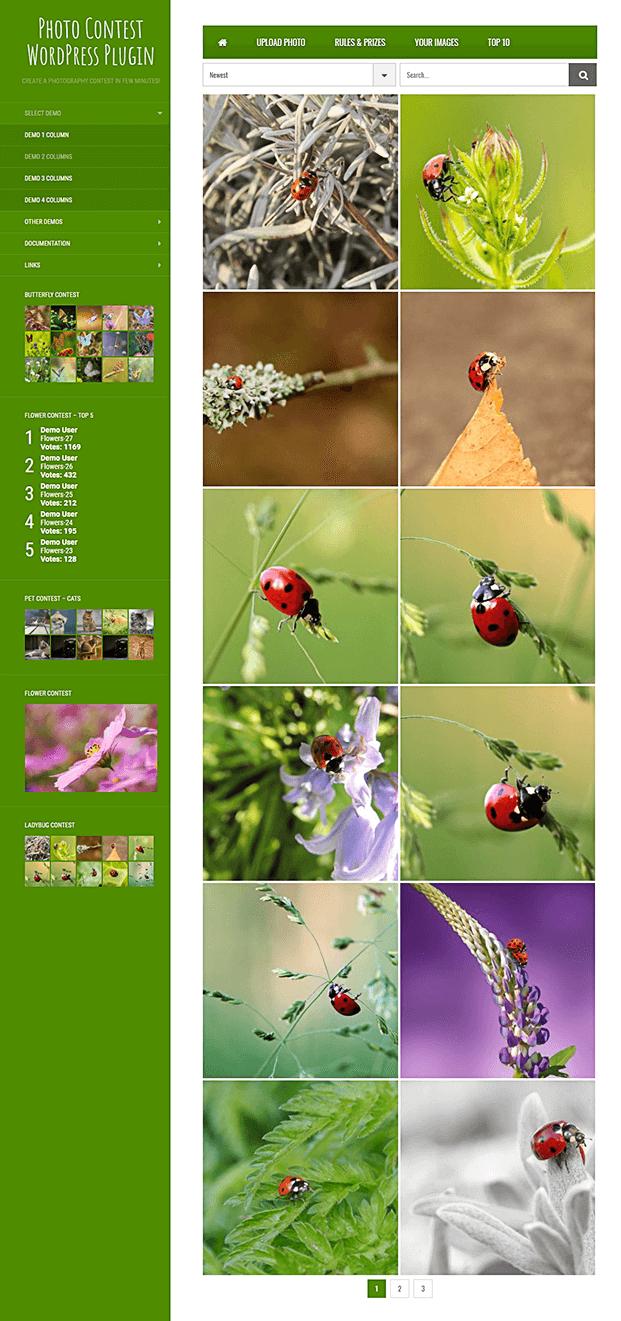 Contest Images -  Photo Contest WordPress Plugin