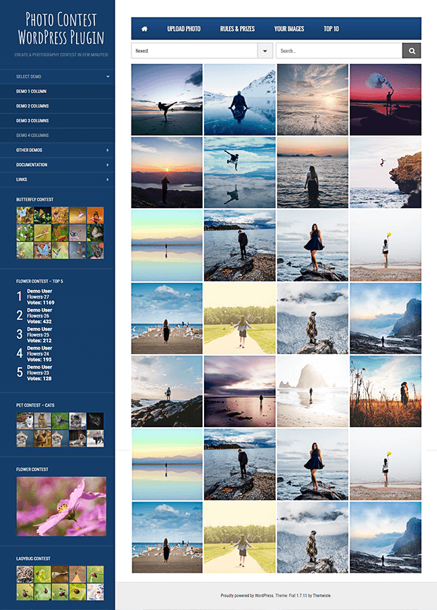 Vote Option -  Photo Contest WordPress Plugin