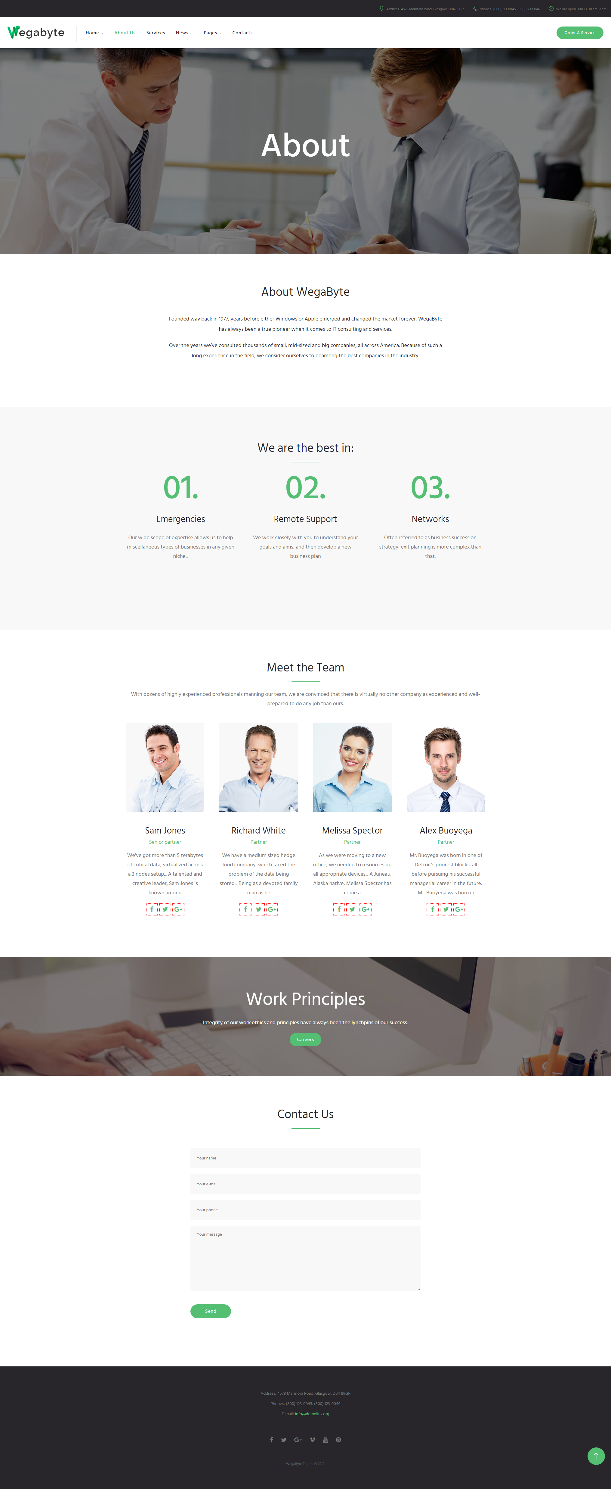 About us - IT Consultant WordPress Theme