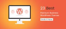 23 Best Premium Business