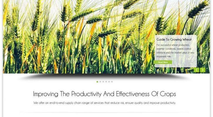 AgroBusiness WP Theme
