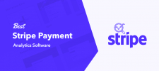 Best Stripe Payment Analytics Software