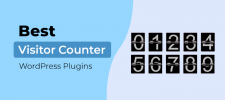 Visitor Counter WordPress Plugins