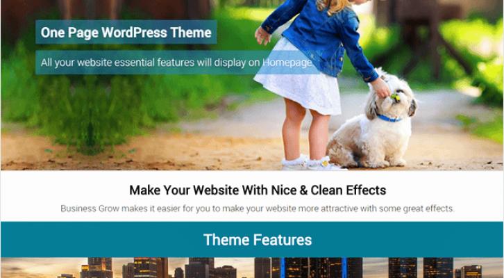 BusinessGrow Best Responsive One Page WordPress Theme