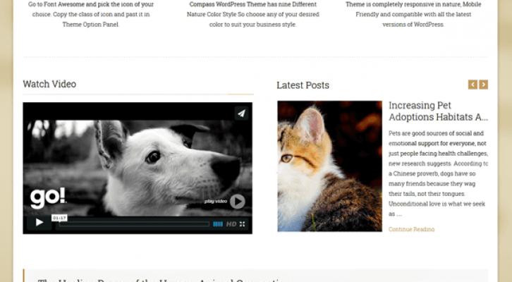 Compass-WordPress-Theme-2014-05-27-15-22-09
