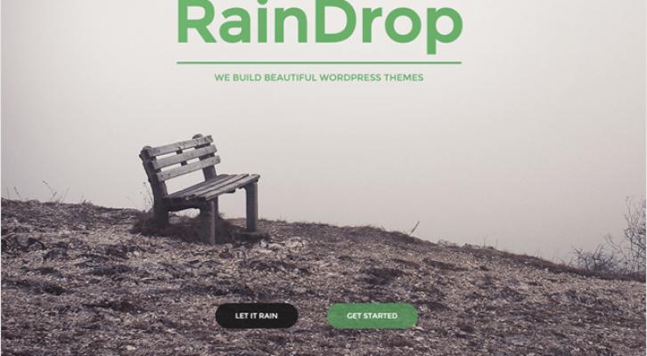 RainDrop Best Responsive One Page WordPress Theme