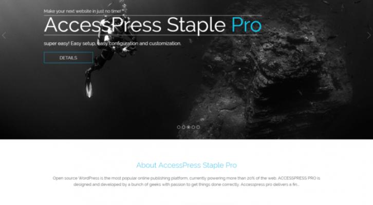 accesspress staple pro wp theme