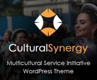 Cultural Synergy - Multicultural Service Initiative WordPress Theme & Template