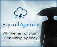 Squall Agency - Storm Consulting Agency WordPress Theme & Template